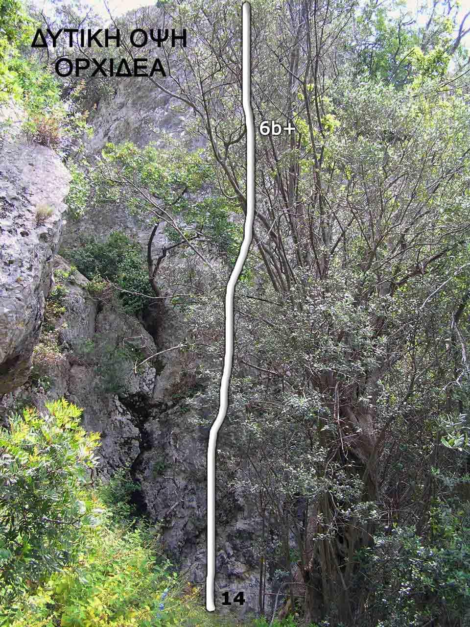 limni-evoias-ditiki-opsi-orxidea